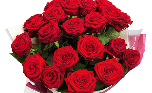 valentine_s-day-roses